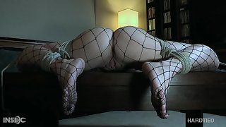 Pet fro yummy ass Katie Kush is directed all round and fucked fro a metal adhere